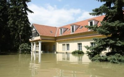 What Homeowners Need to Know About Water Damage Insurance Claims